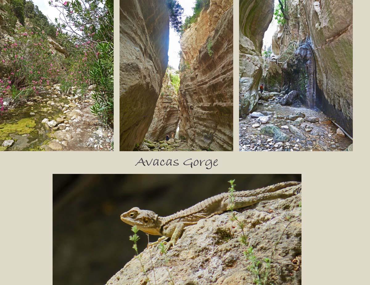 Gorge of Avaca